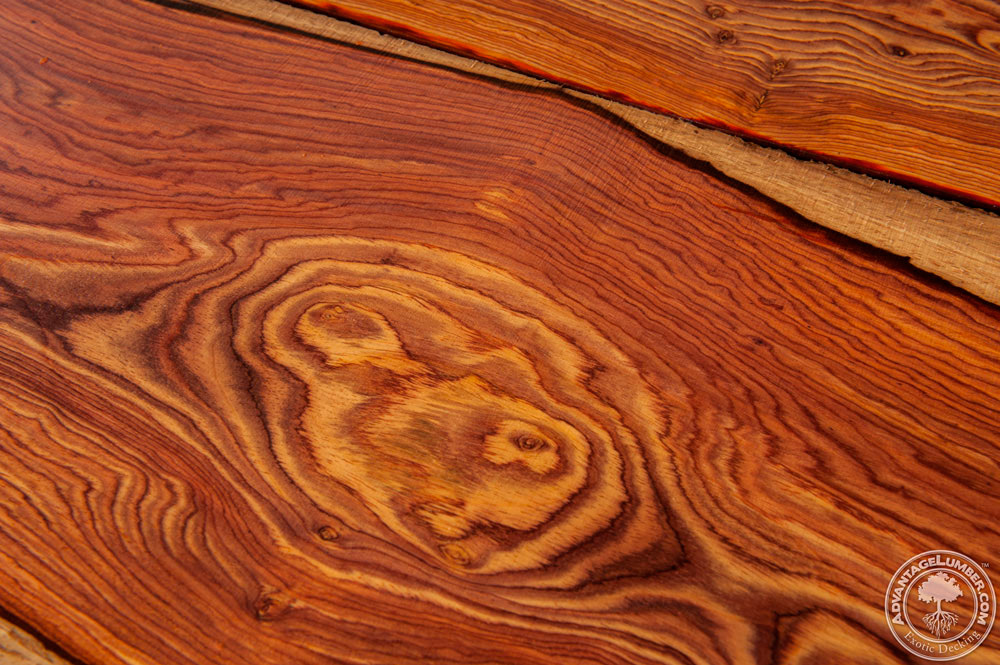 Cocobolo Wood Cocobolo Lumber