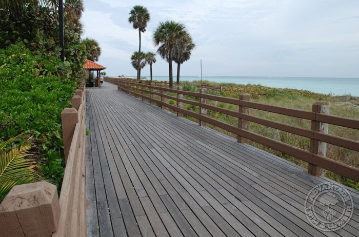 ipe decking commercial applications