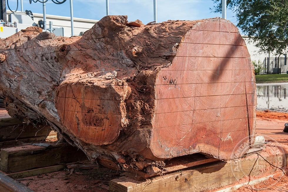 Eucalyptus Lumber Shipped Directly To You