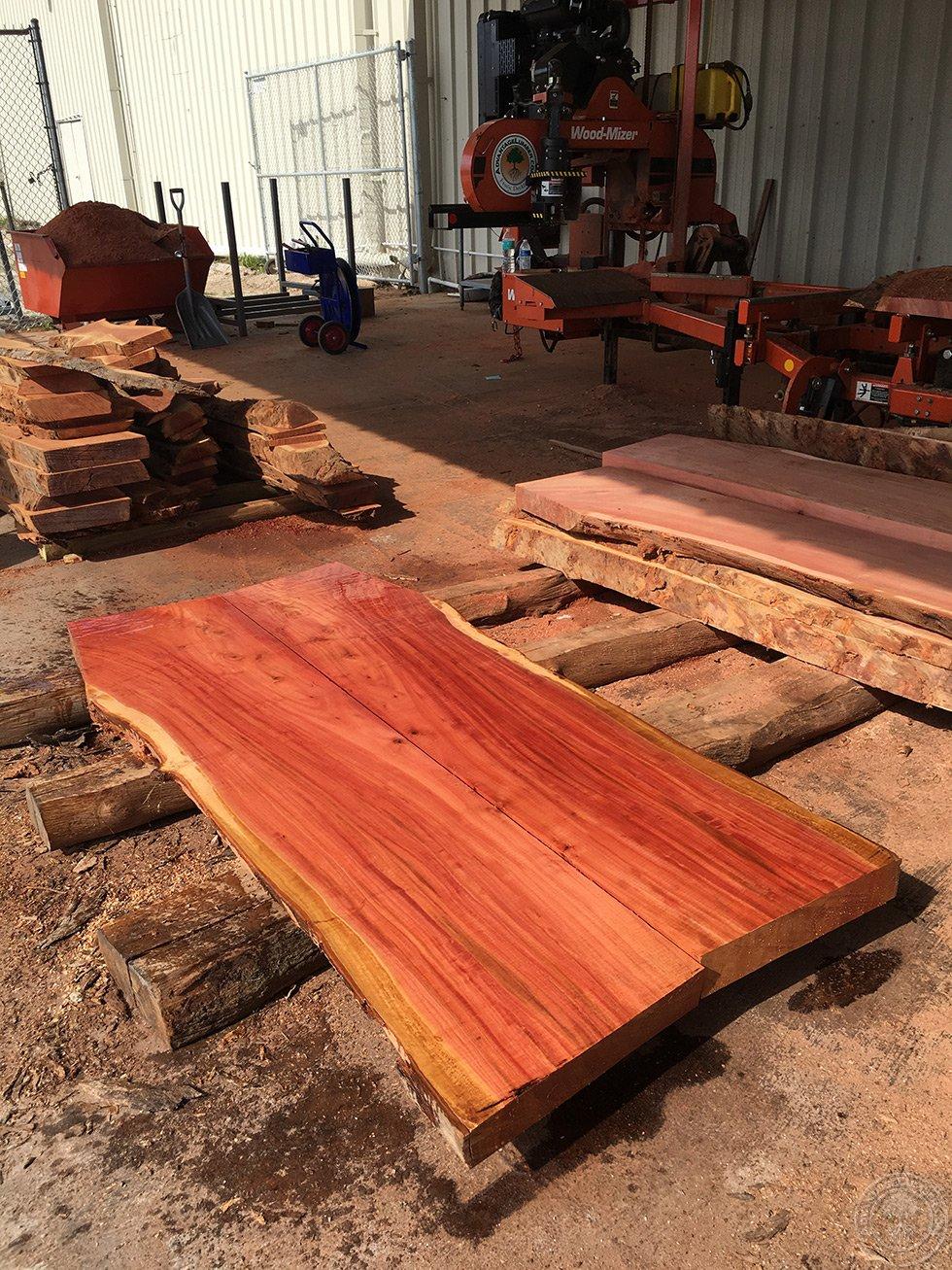 Eucalyptus slabs being milled  eucalyptus slabs florida lumber mill. Eucalyptus Lumber   Shipped directly to you