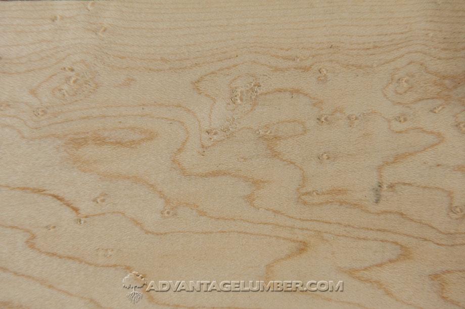 Birdseye maple